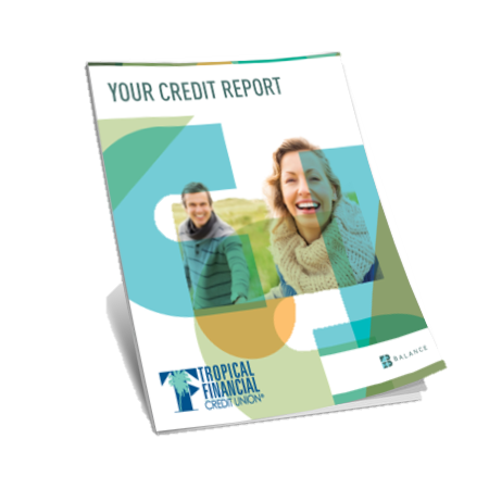 Credit Report.png